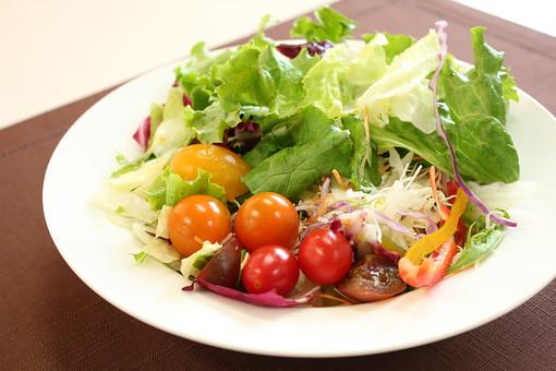 サラダ 野菜 緑黄色野菜 トマト プチトマト レタス キャベツ カラフル 朝食 健康 ヘルシー 食べ物 食物 フード 食品 食料 食事 料理 緑 白背景 白バック ホワイトバック 紫野菜 お皿