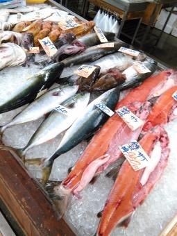 魚売り場の写真素材|写真素材なら「写真AC」無料(フリー)ダウンロードOK