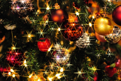 クリスマスツリー2の写真