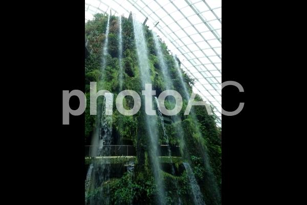 シンガポール ガーデンズバイザベイ クラウドフォレスト 滝の写真