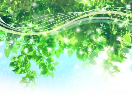自然 植物 風 そよ風 波 空気 空 青空 雲 積乱雲 新緑 流線 木漏れ日 木洩れ日 太陽 日 黄緑 明るい 山 林 葉っぱ 木の葉 木葉 はっぱ 爽やか 木の枝 小枝 風景 木 樹木 森 グリーン エコ エコロジー 環境 eco eco 森林 森林浴 森林セラピー いやし リラックス リラクゼーション やすらぎ 安らぎ マイナスイオン 健康 美容 背景 背景素材 テクスチャ テクスチャー バックグラウンド 3月 4月 5月 6月 7月 8月 9月 10月 夏 緑 春 初夏 癒し きらめき キラメキ 優