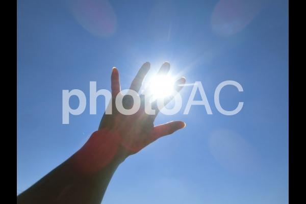 希望の光1の写真