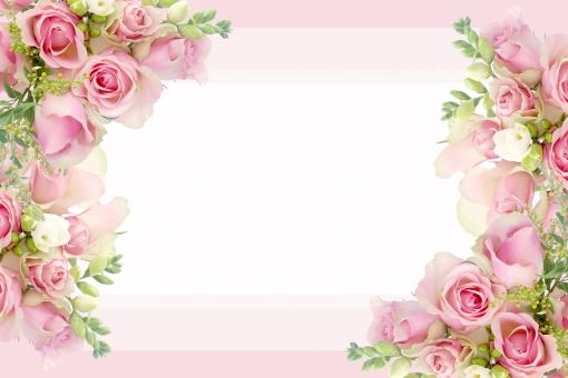 白背景 女性 プレゼント 誕生日 贈り物 花 バラ 薔薇 かわいい フレーム コピースペース フラワー ピンク 白 母の日 ホワイト 素材 背景 ブーケ 透明 カード 花束 上品 バックグラウンド 背景素材 グラデーション 壁紙 横 結婚 ブライダル 記念日 メッセージカード ウェディング 切り抜き 新婦 ピンク色 文字スペース 背景画像 バックグランド フリージア フォトショップ オールシーズン レイヤー ヨコ 花画像 背景透明 横長写真 psd フレームローズ