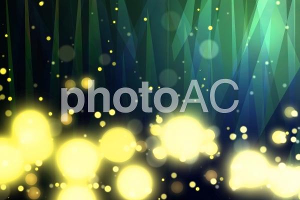 ホタルの輝きの写真