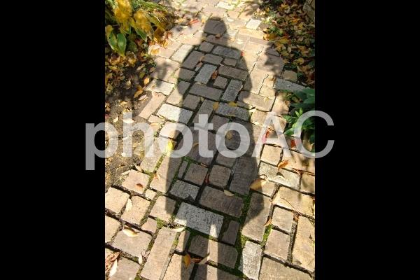 一人ぼっちの影の写真