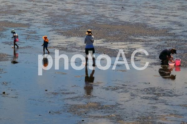 潮干狩り4の写真