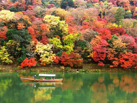京都嵐山の紅葉の写真