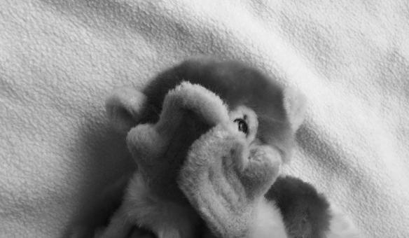 ちらっ チラ見 見る 気になる 噂 噂話 陰口 気にする 知りたい 人間関係 サル ぬいぐるみ