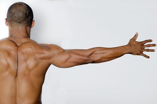 男 男性 ダイエット 背中 後姿 背筋 スポーツ 筋トレ トレーニング 筋肉 腕 頭 人間 人体 体 ボディ 強い アスリート 憧れ 頑丈 スポーツジム ボクシング ボクサー マッスル ボディビルダー 漢 屈強 筋力 ストイック ビルドアップ ムキムキ