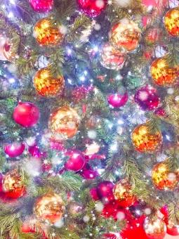 バックグランド 年末 イルミネーション Xmas 針葉樹 きらきら 飾る イブ イヴ イベント オーナメント ぴかぴか もみのき きらめく 聖夜 派手 サンタクロース 金色 ロマンチック ゴールド  赤色 メタリック 輝く ピカピカ 綺麗 きれい キレイ  まぶしい 楽しい 吊るす 冬 ウィンター 12月24日 25日 メリークリスマス 光 LED クリスマスデート