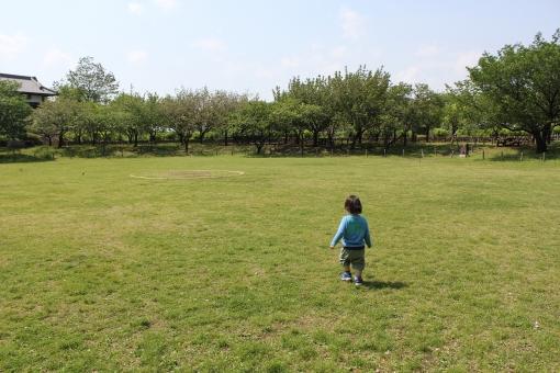 緑地公園 子供の写真