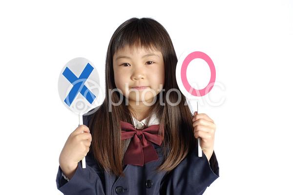 札を持った女の子3の写真