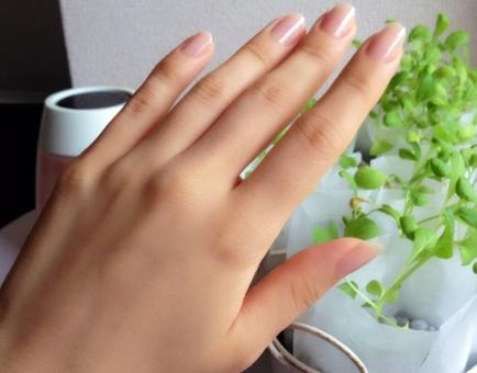 女性 手 ハンドパーツ 指 爪 ネイル ゆび つめ て 日本人 植物 家 部屋 屋内 自然光 晴れ キレイ 手の甲 美容 健康 スキン 肌色 人物 スキンケア ビューティー 乾燥 保湿 コスメ ボディパーツ 潤い