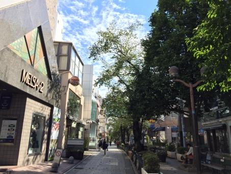 自由が丘 散歩 ショッピング 東京 青空 秋 緑 街路樹 石畳 おしゃれ 東急 東横線 オシャレ 通り