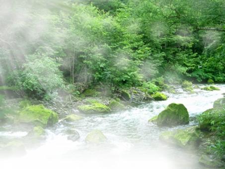 清流 川 光 森林 森 河 激流 涼しい 川下り 釣り 川釣り 鮎釣り 和風 涼しい背景 涼しい 清潔 自然 大自然 木 林 水 water 日光 日光 フラッシュ エコ 夏 夏の背景 風物詩 web背景