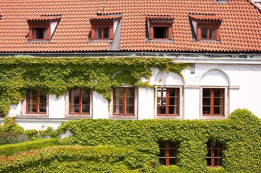 外国の窓と壁 窓 壁 外国 海外 チェコ ヨーロッパ 東欧 中欧 ガラス 透ける 綺麗 模様 外国風景 風景 素材 白壁 鉄 窓枠 四角 ナチュラル アイビー 半円 蔦 つた 植物 瓦 屋根