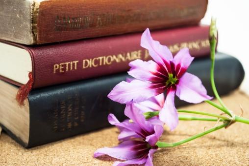 辞書とリューココリーネの花の写真