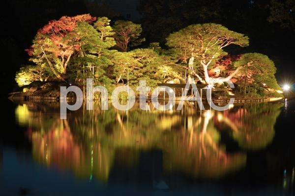 水面に映るの写真