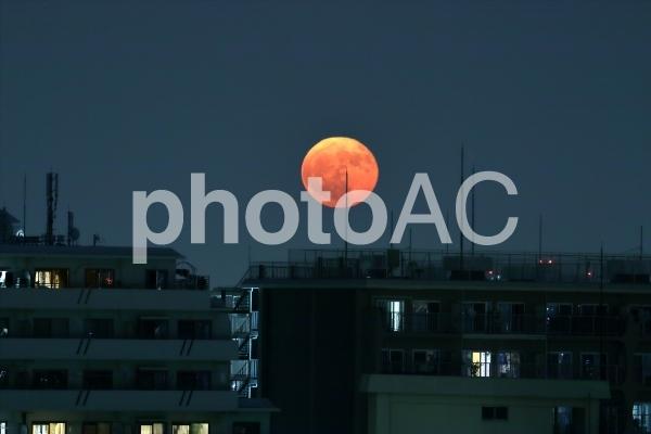 赤い満月の写真