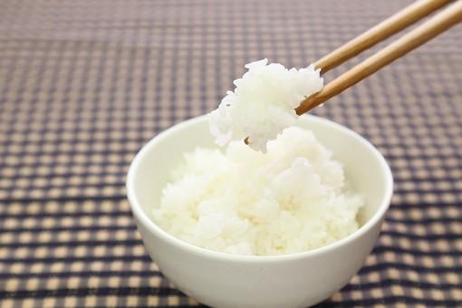 米 ご飯 ごはん 白米 お米 コシヒカリ ササニシキ あきたこまち 食べ物 料理 和食 和風 フード 箸 食物 日本食 和風料理 日本 和 シンプル 栄養 健康 健康管理 食事 恵み 自然の恵み 農業 農家