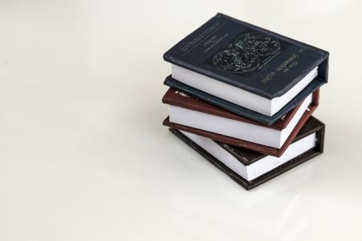 インアテリア BOOK 図鑑 小物 雑貨 読書 勉強 学習 オブジェ 洋書 置物 おもちゃ 豆本