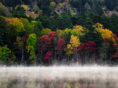 オンネトーの紅葉の写真