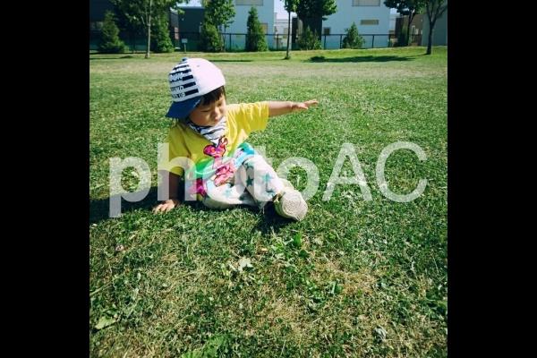 芝生に座る子供の写真