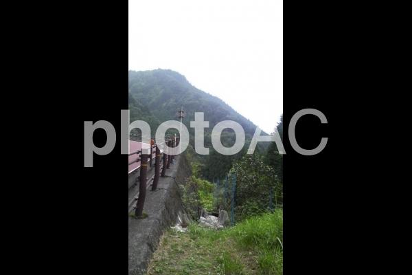 檜原村国道205号線 山道の写真