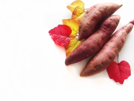 さつま芋 サツマイモ さつまいも 秋 9月 10月 紅葉 落ち葉 秋のイメージ 食欲 食べ物 芋類 背景