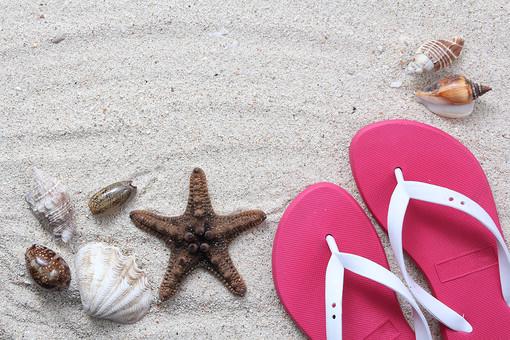 夏 真夏 夏季 サマー 浜辺 砂浜 ビーチ 砂 サンド 真砂 砂子 沙子 石英 細粒砂 砂場 白浜 ホワイトビーチ 海 海岸 海辺 海浜 岸辺 白 ホワイト 白砂 貝殻 貝 巻貝 シェル ビーチサンダル ピンク
