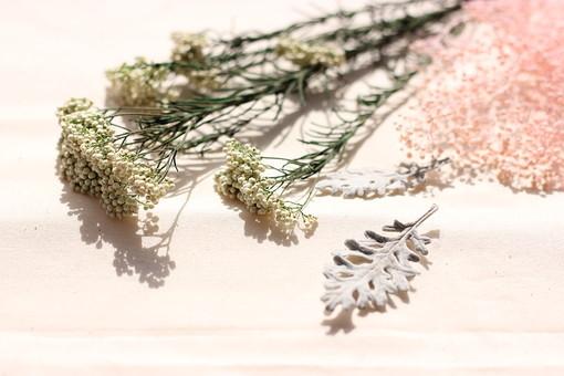 ドライフラワー 花 小物 雑貨 インテリア 植物 枯れた 乾燥 カスミ草 ミニカスミ草 霞層 かすみ草 ピンク ドライリーフ