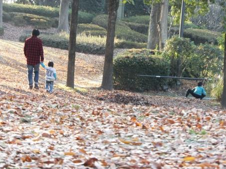 秋の散歩の写真
