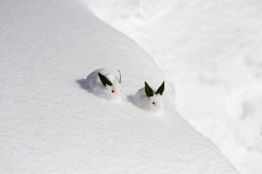 ゆきうさぎ 雪兎 雪ウサギ 冬 雪景色 雪原 南天 植物 葉 実 可愛い かわいい お正月 和 雪像 雪肌 雪遊び 親子 兄弟