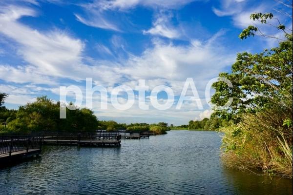 公園内の池の写真