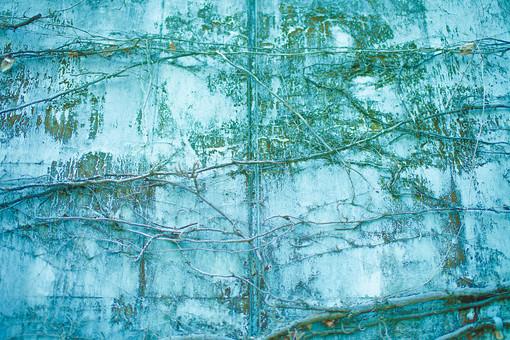 建物 建築 建築物 壁 塀 コンクリート 剥げる 褪せる 傷 古い 模様 這う 巻きつく 植物 自然 蔓 葉 葉っぱ 枝 枯れる 成長 育つ 伸びる 模様 無人 加工 景観