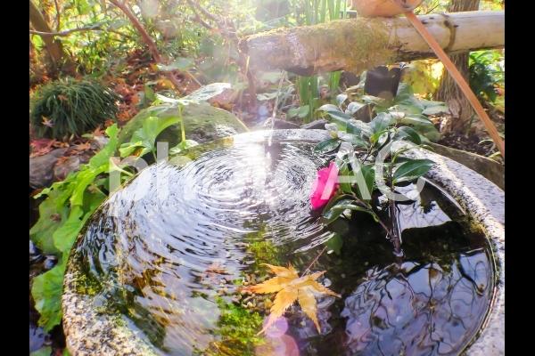 手水鉢(ちょうずばち)の写真