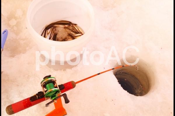 ワカサギ釣りの写真