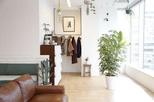 植物とおしゃれなルーム2の写真