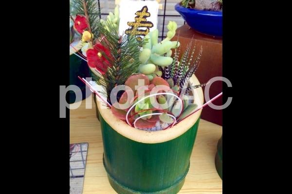 門松サボテンの寿インテリアの写真