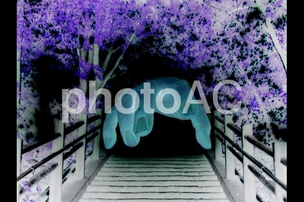 闇から伸びる手2の写真
