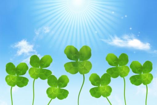 四つ葉 クローバー シロツメクサ 葉 葉っぱ 緑 グリーン 空 青空 太陽 光 輝き きらめき 幸せ しあわせ ラッキー 幸福 平和 太陽光 晴れ 快晴 天気 お天気 喜び 喜ぶ 太陽光線 まぶしい メルヘン ファンタジー かわいい エコ エコロジー 植物 風景 背景 ポストカード メッセージカード 壁紙 お祝い 祝う バックグラウンド 青 水色 ブルー さわやか 鮮やか 新鮮 フレッシュ 元気 活発 ハツラツ みずみずしい 希望 幸運 お守り 応援 後光 前向き ポジティブ 上昇 上昇志向 春 夏 成功 チャンス 受験 合格 合格祈願 スピリチュアル