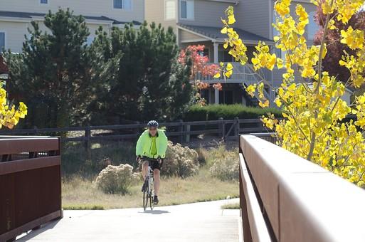 自然 風景 景色 環境 スナップ 旅行 散歩 公園 森林 緑 林 小さい 秋 季節 葉っぱ 植物 美しい きれい シルエット 樹木 草花 癒し 紅葉 行楽 枯れる シーズン 旬  橋 自転車 人間 サイクリング