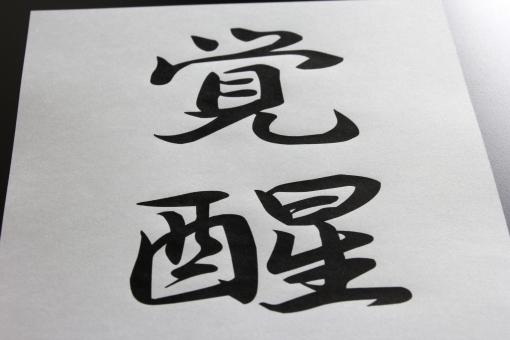 かくせい カクセイ Arousal arousal AROUSAL 覚醒する awakening 目覚め Awakening 意識 AWAKENING 目覚める 日本語 漢字 言葉 気付き 目覚める japan japanese JAPAN JAPANESE コトバ ニホンゴ カンジ KANJI kanji KAKUSEI kakusei Kakusei 迷い