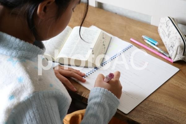 英語の宿題を勉強する小学生の女の子の写真