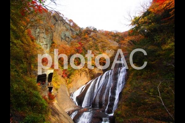 袋田の滝の紅葉の写真