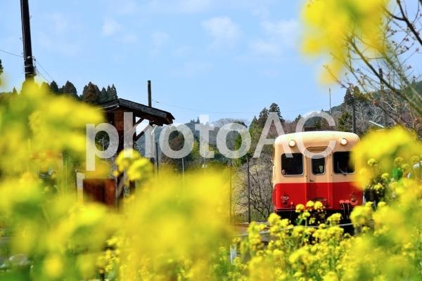 小湊鉄道の写真