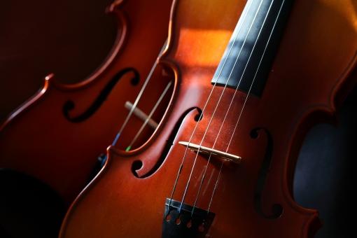 小物 楽器 音楽 弦楽器 バイオリン コンサート オーケストラ 演奏 プレイヤー 複数 木漏れ日 イメージ