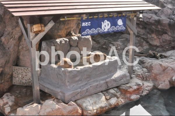 温泉に入るカピバラの写真