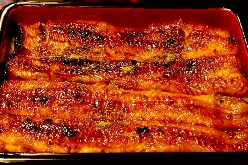 うな重 うなぎ ウナギ 鰻 鰻重 かば焼き 蒲焼 ごはん ご飯 御飯 食事 食 ウナギの蒲焼 食文化 日本 和 土用の丑 土用の丑の日 夏 季節