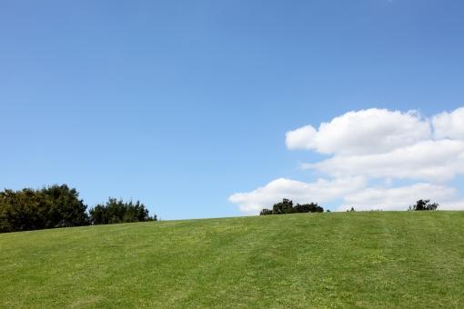 風景 芝生 丘 空 青空 晴れ 快晴 余白 コピースペース スペース 自然 雲 植物 草 芝 公園 草原 高原 野原 原っぱ 背景 屋外 無人 木 樹木 明るい イメージ 緑 緑色 青 白 青色 人物なし さわやか 爽やか 春 夏 空間